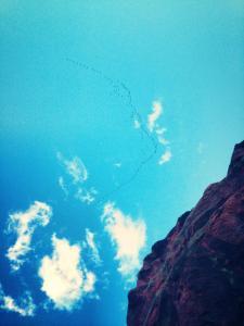 Birds in the sky at Garden of the Gods in Colorado Springs